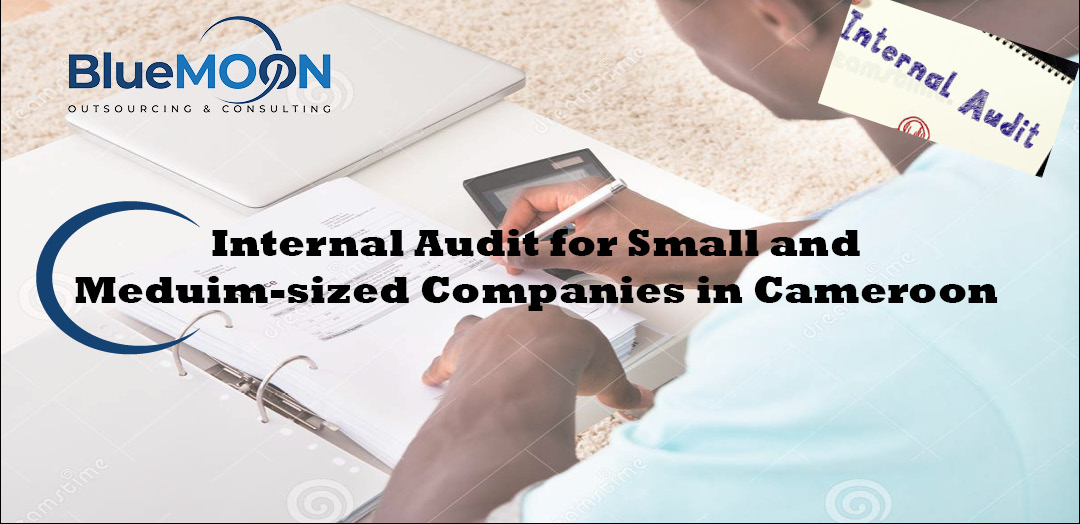 Internal Audit for Small and Meduim Sized Companies in Cameroon